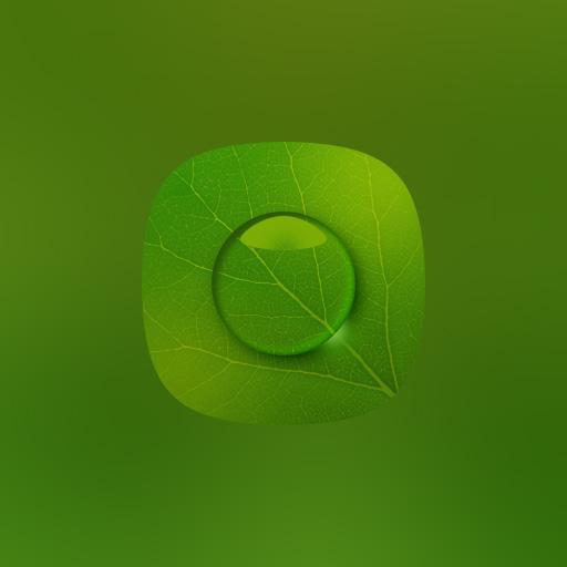 绿叶精选壁纸